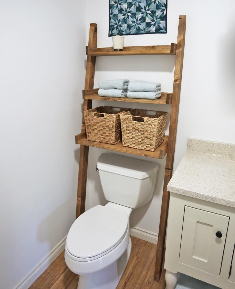 Over the Toilet Ladder